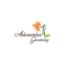Adenandra Gardening