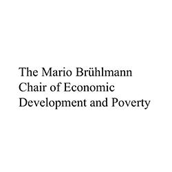 The Mario Bruhlmann